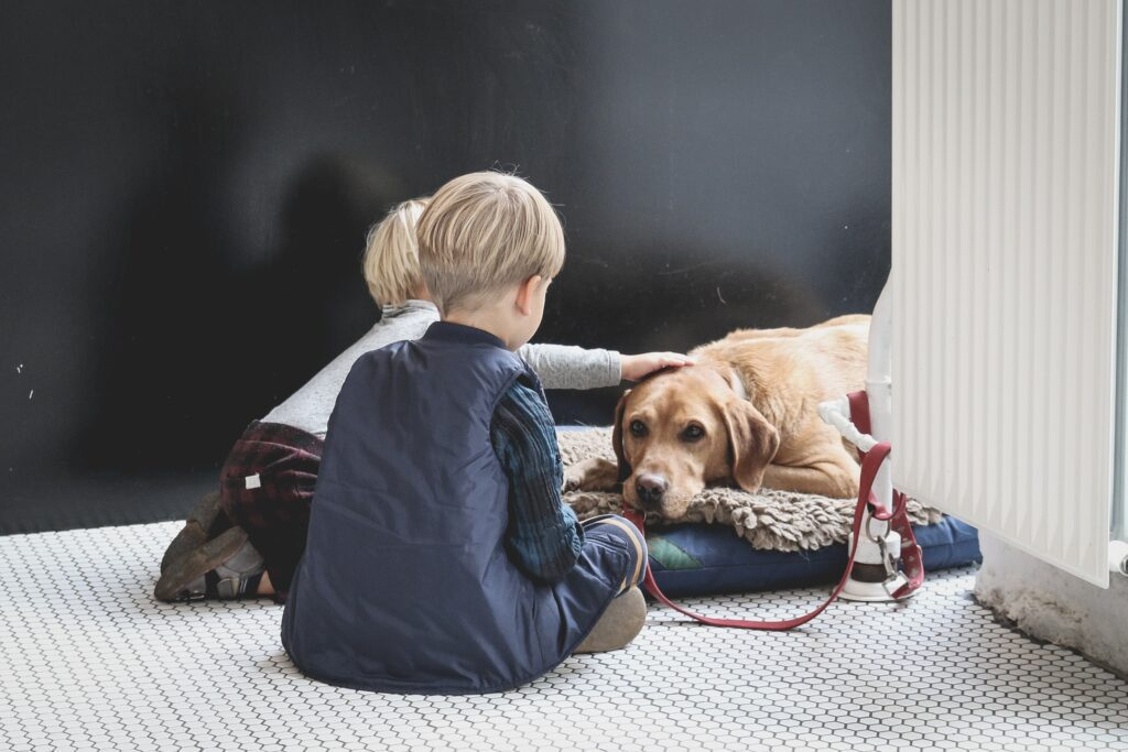 Kids with dog bed
